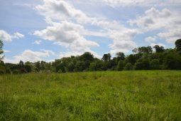 Kirkhill Grounds